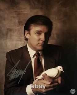 Donald Trump 45e Président Autographe Original Signé À La Main 8x10 Avecholo Coa